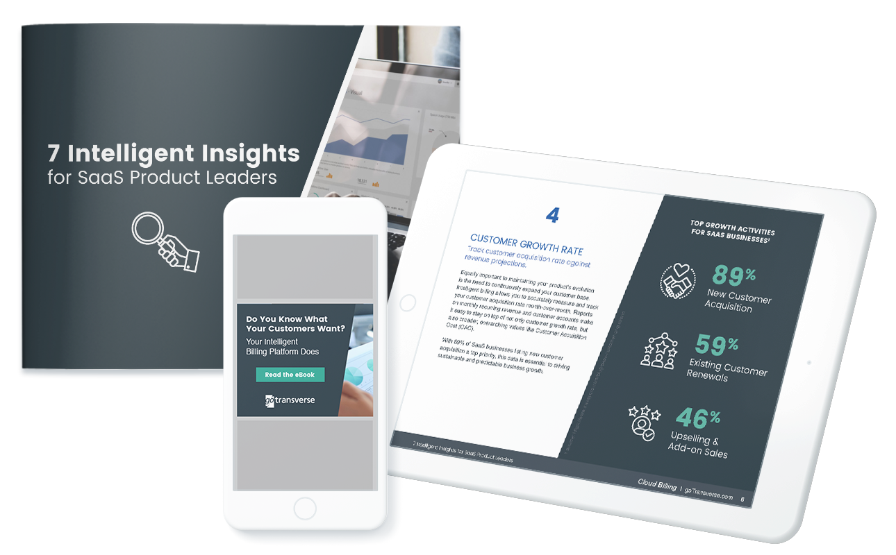 eBook mockup for SaaS Product Leaders targeting b2b demand generation